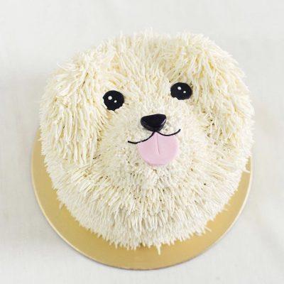 Children's Cake 1