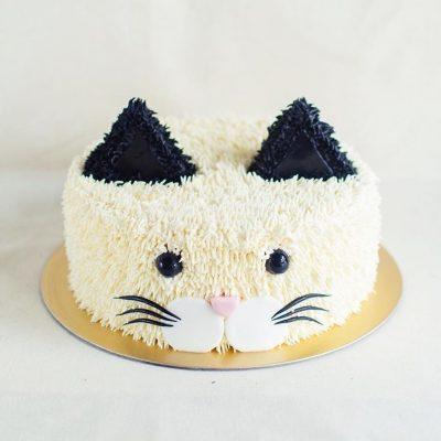 Children's Cake 24